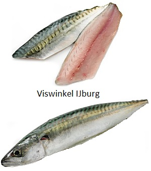 Makreel (per stuk)
